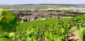 Champagne & Burgundy : Wines & Unesco Historical Heritage